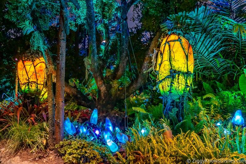 glowing lamps at Pandora: The World of Avatar at night