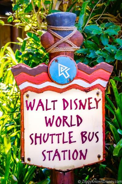 Bus transportation to Disney's Animal Kingdom