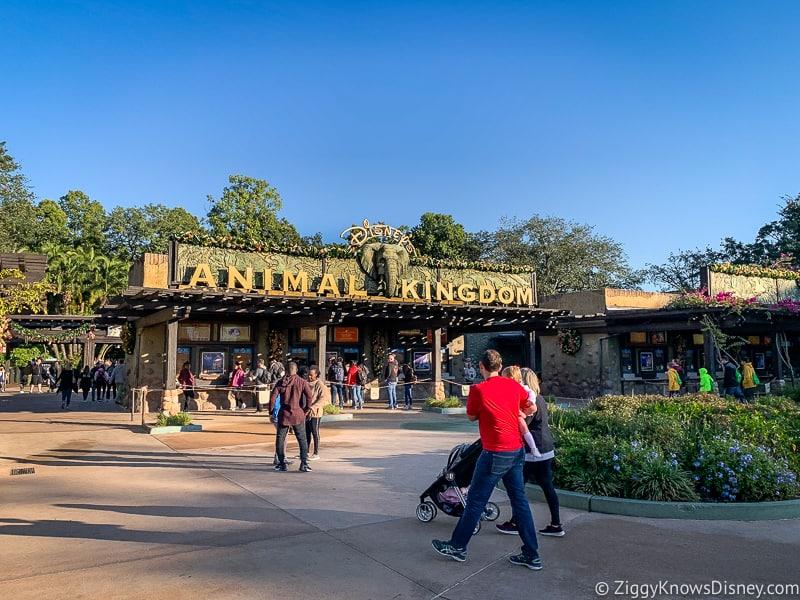 Disney's Animal Kingdom park entrance