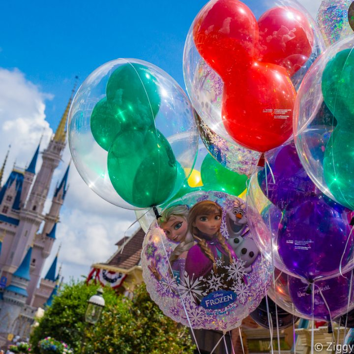 Early Theme Park Entry Disney World