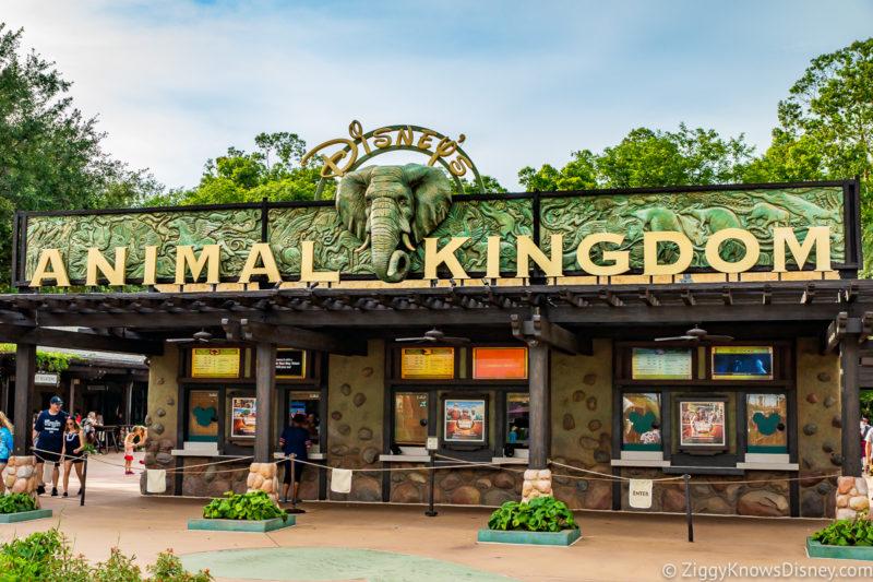 Animal Kingdom entrance