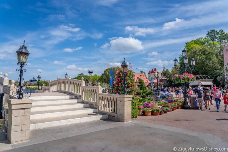 Flowers at Disney World