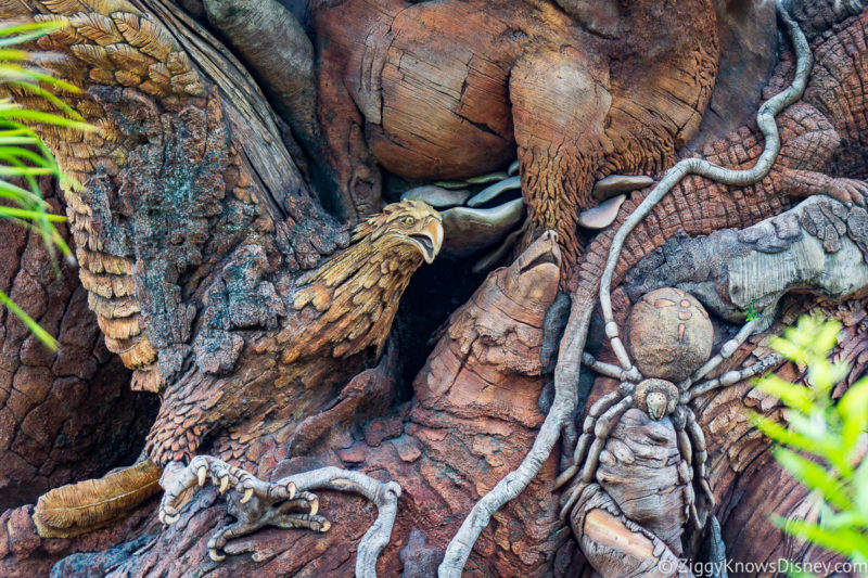 Discovery Island Trails Disney's Animal Kingdom Attractions