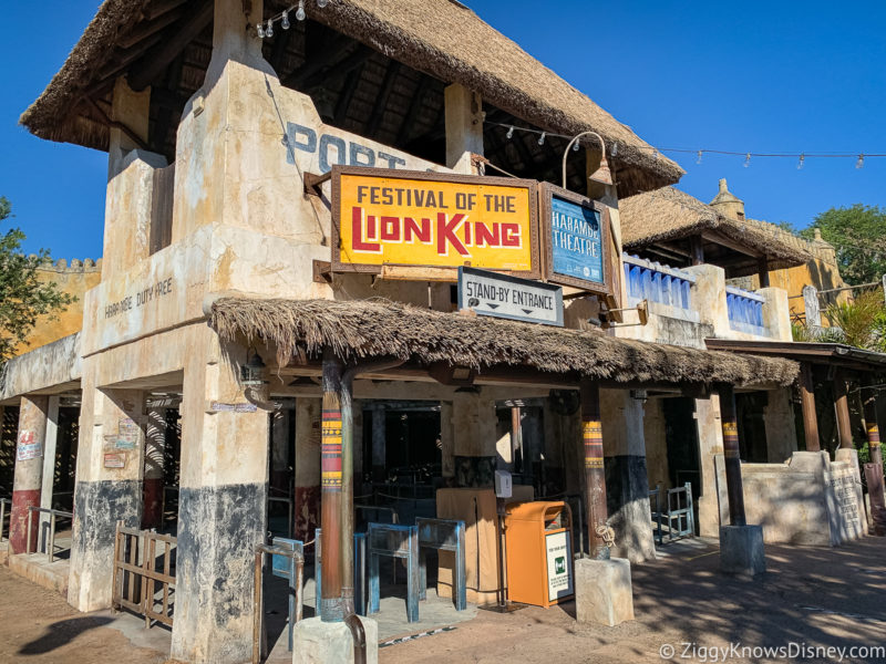 Festival of the Lion King Animal Kingdom Shows