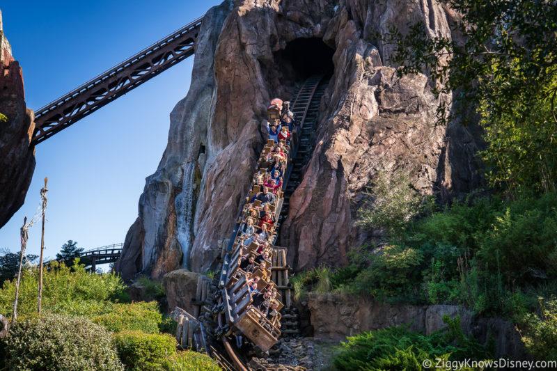 Disney's Animal Kingdom Thrill Rides