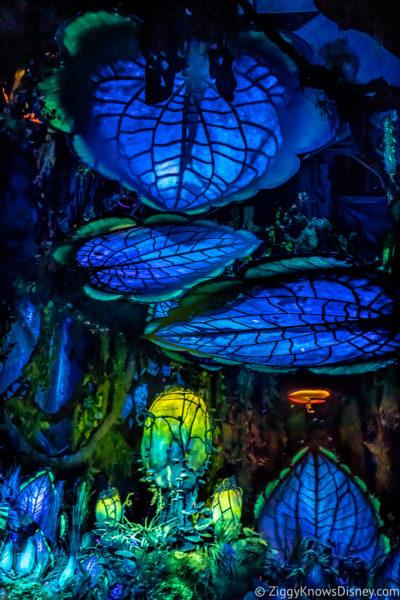 Na'vi River Journey Disney's Animal Kingdom Attractions