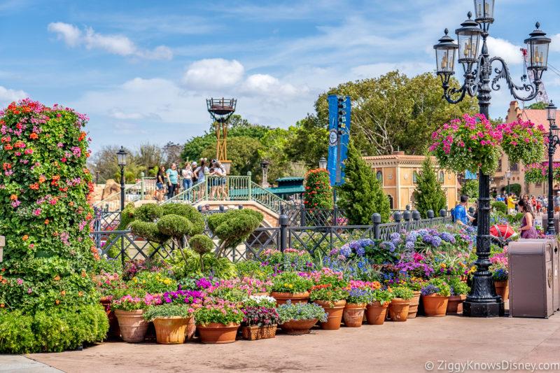 Disney World in May