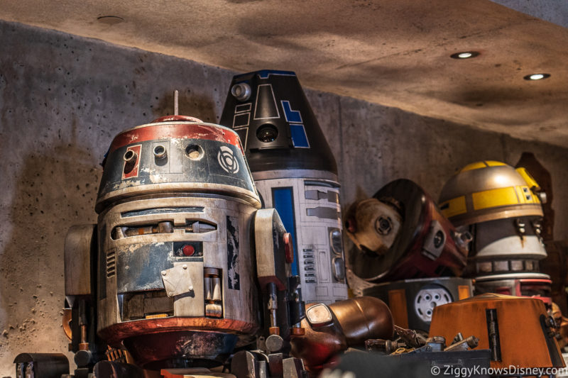 Tips for Going to Disney World in May