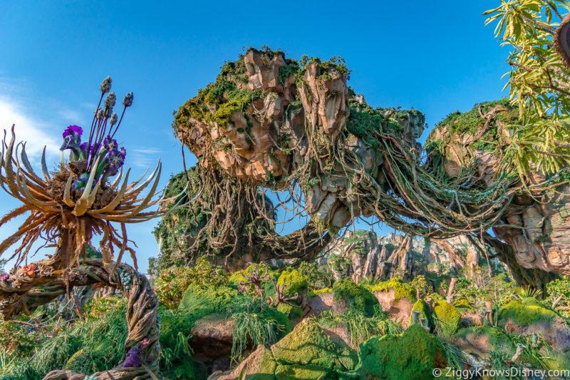 May at Walt Disney World