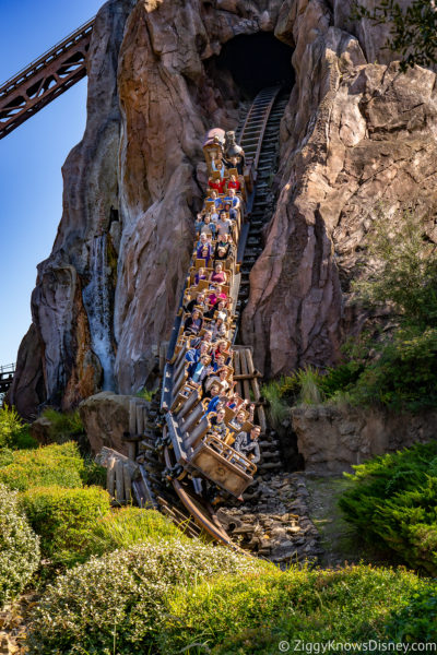 Expedition Everest Disney World Roller Coasters