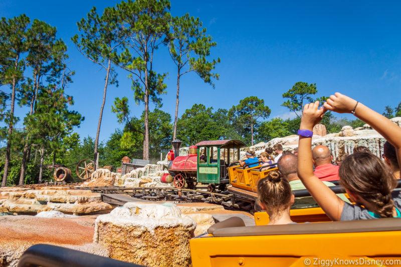 Best Roller Coasters at Disney World