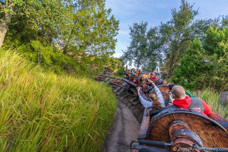 Disney World Roller Coasters Seven Dwarfs