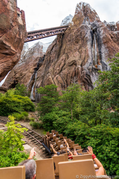 Ranking Disney World Roller Coasters Expedition Everest