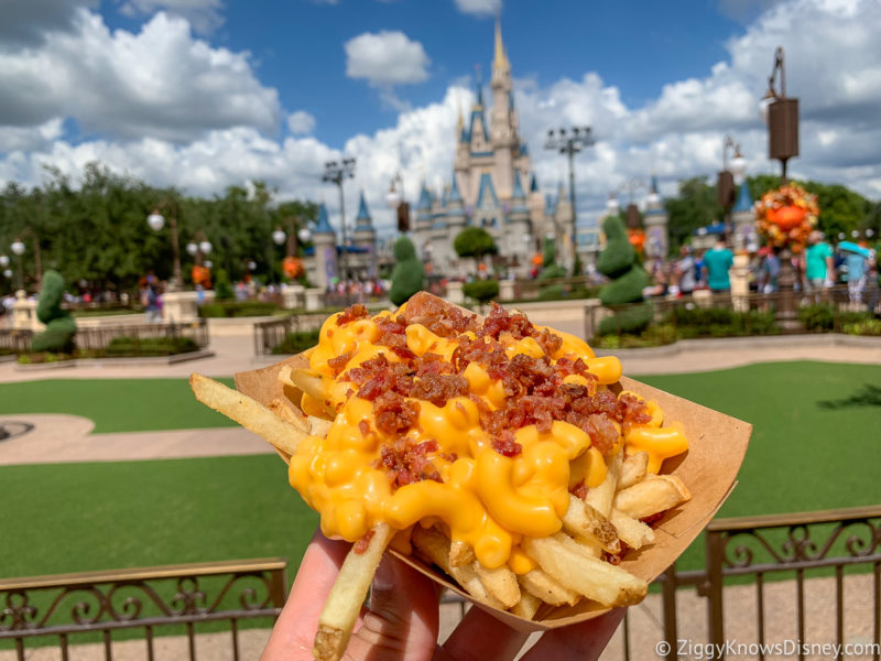 Mac and Cheese Fries at the Magic Kingdom