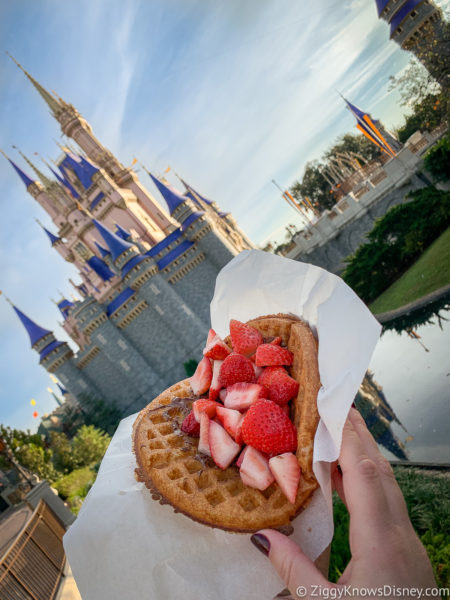 Fruit Waffle from Sleepy Hollow Magic Kingdom