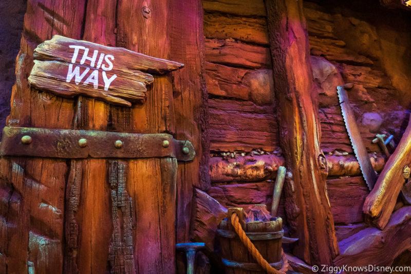 Disney World Rider Switch