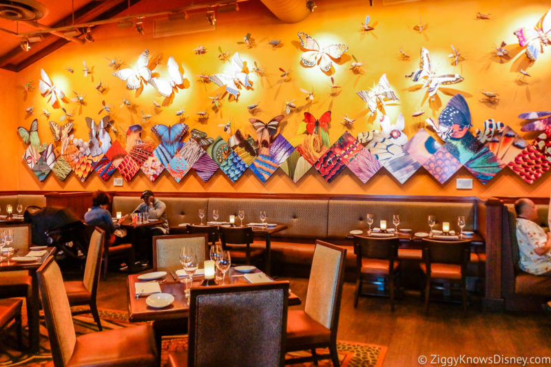 Reservations at Animal Kingdom Restaurants