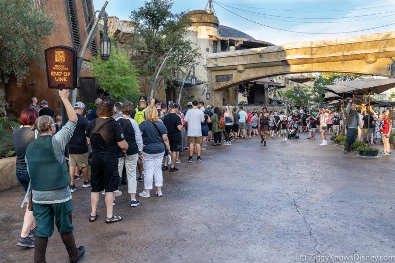 Disney World Crowds in July