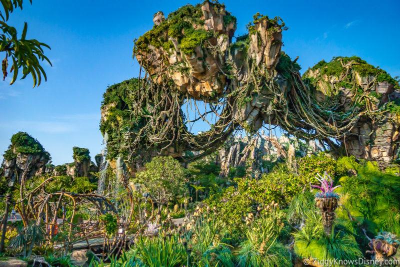 June at Walt Disney World
