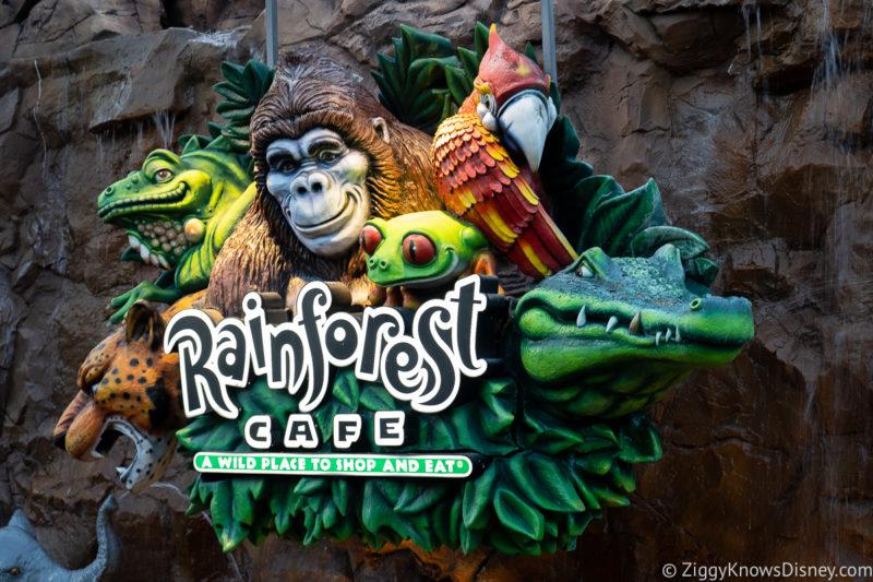 Rainforest Cafe Disney Springs