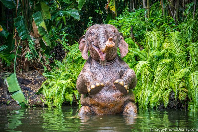 Elephant pool Jungle Cruise Magic Kingdom