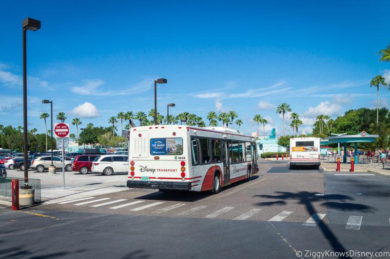 Buses at Walt Disney World