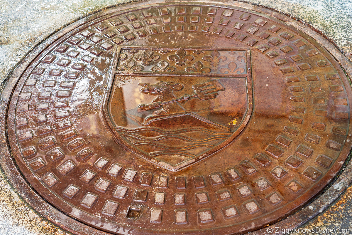 Remy sewer cover